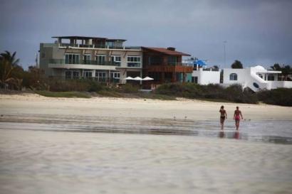 iguana-crossing-playa-turistas